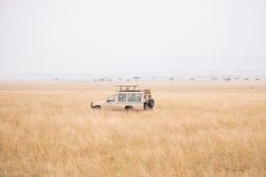 תמונה של ג'יפ מתוך טיול ספארי באפריקה