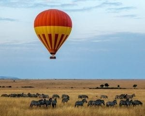 תמונה שצולמה בזמן טיול ספארי באפריקה